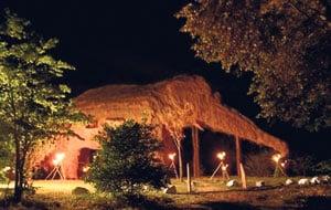 Bizarre Elephant Hotel