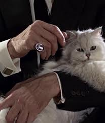 Famous Cats and The Evil Cat Owned by Blofeld