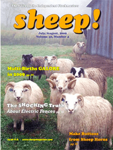 The Weird Magazines You Can Read if You Really Want to