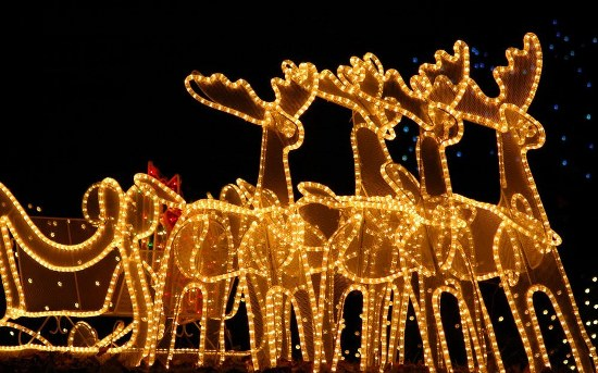 LED Christmas Lights reindeer