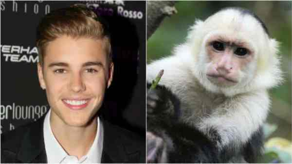 5 Celebrities With Exotic Tastes In Pets