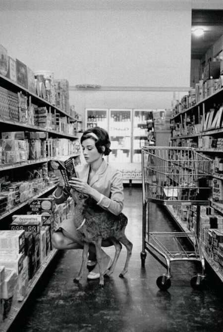 Rare historical photos of Audrey Hepburn with her deer