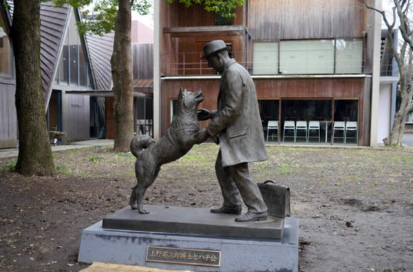 Hachiko - Most Famous Dogs Of All Time