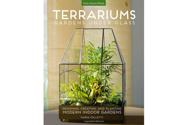terarium book christmas gifts for men