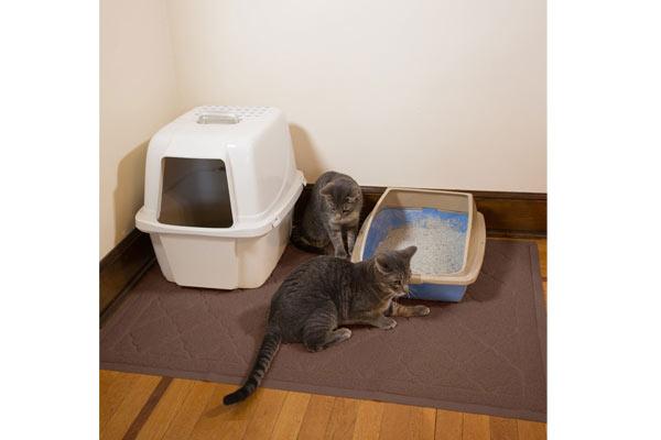 cat litter mat for cat lover birthday