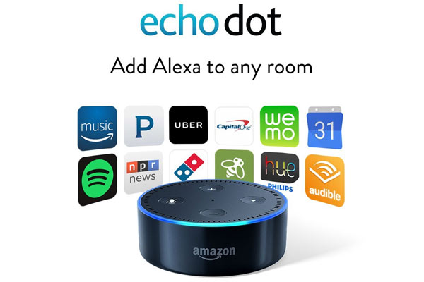 cool presents for men echo dot