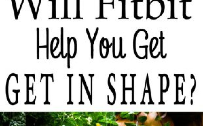Will Fitbit Help You Get In Shape And Have A Healthie