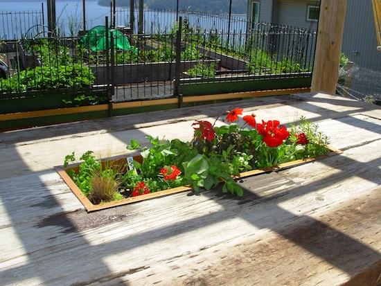 planting table box
