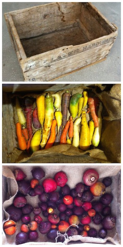 root cellar box Collage