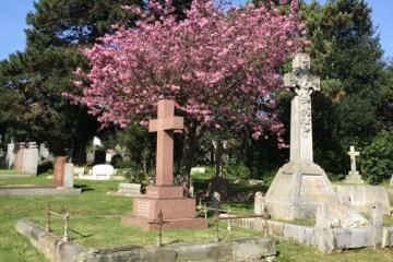 graveyard-hove-2