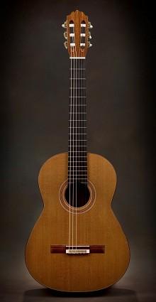 Douglas Scott - Short Scale Guitar