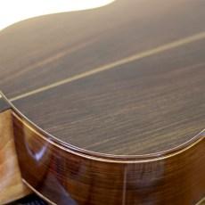Dominelli Guitar - Back & Sides