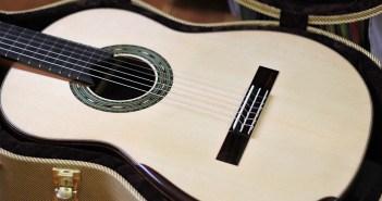 Dominelli Guitar - Guitar + Case