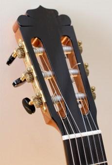 Dominelli Guitar - Head