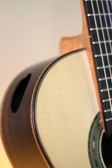 Dominelli Guitar - Sound Portal