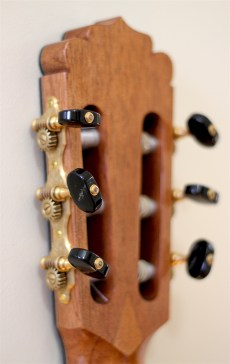 Dominelli Guitar - Gotoh 510 tuners