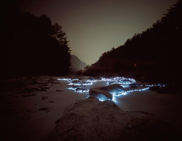 Starry Night: Light Installations by Lee Eunyeol photography light installation