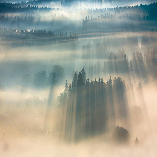 https://i0.wp.com/www.thisiscolossal.com/wp-content/uploads/2012/11/fog-1.jpg