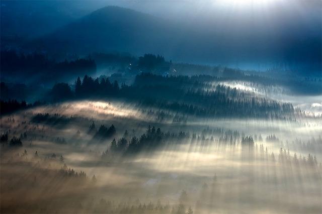https://i0.wp.com/www.thisiscolossal.com/wp-content/uploads/2012/11/fog-2.jpg