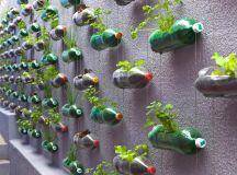 An urban vertical garden built from hundreds of recycled ...