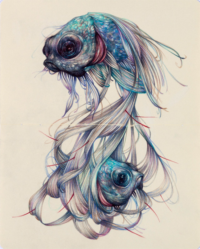 the colored pencil drawings