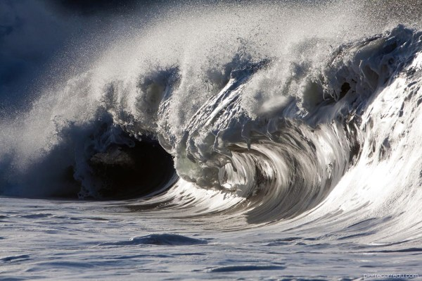 Liquid Sculptures Powerful Waves Pierre Carreau Frozen In Time Colossal