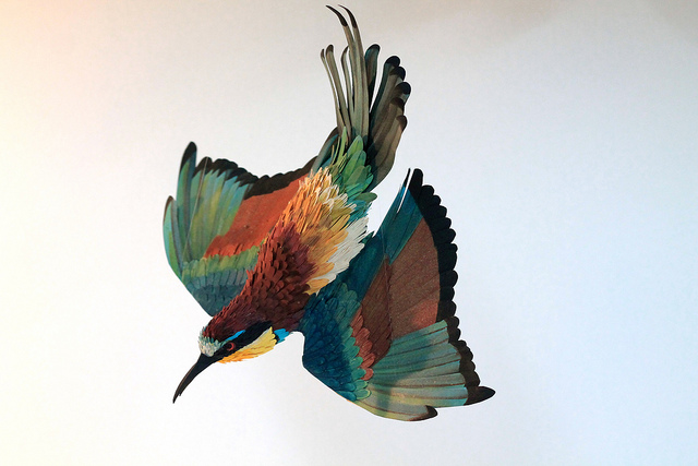 New Paper Birds from Diana Beltran Herrera sculpture paper birds