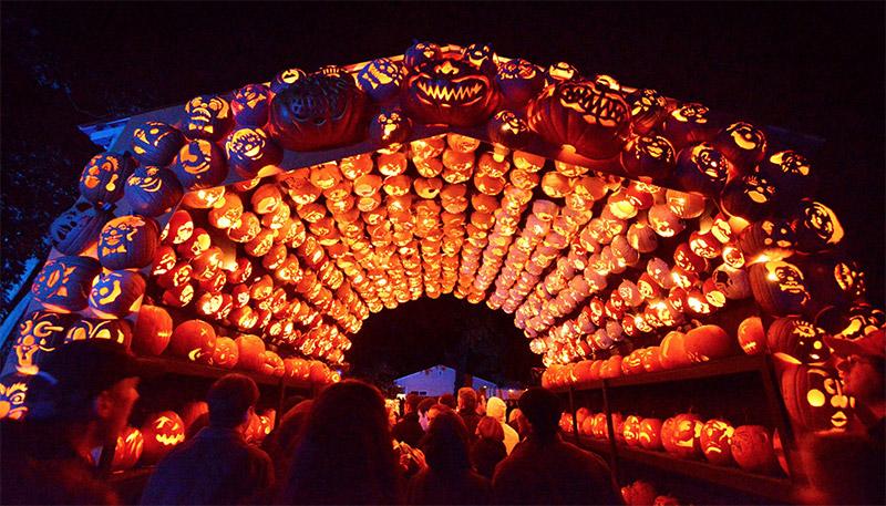 Fall Scarecrow Wallpaper Killer Pumpkin Arrangements At The Great Jack O Lantern