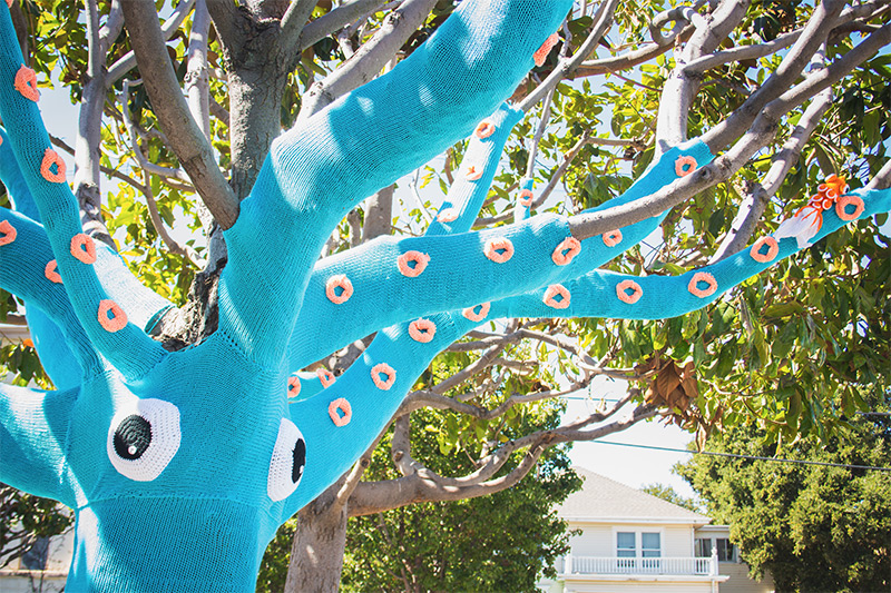 A Yarn Bombed Tree Squid yarn bombing trees textiles