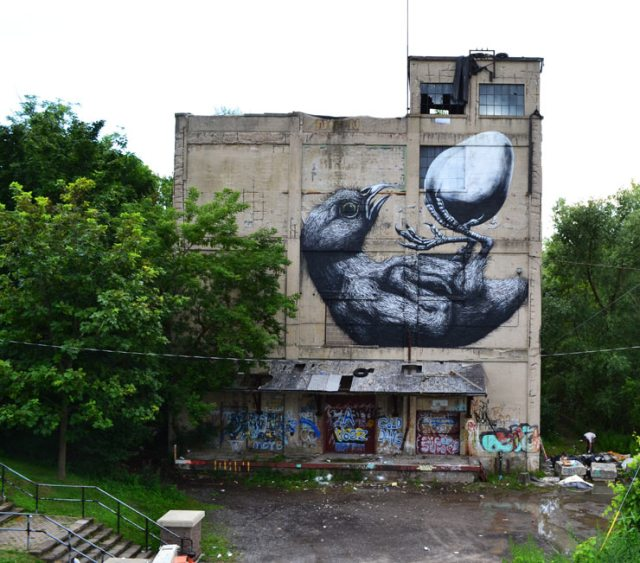 New Environmental Street Art by ROA street art