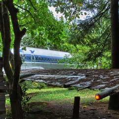 Swing Chair Pics Red Nwpa A Retired Boeing 727 Converted Into Home In The Woods | Colossal