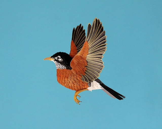 New Lifelike Paper Birds by Diana Beltran Herrera sculpture paper birds