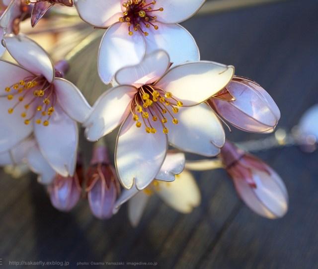 Floral Kanzashi By Sakae 5