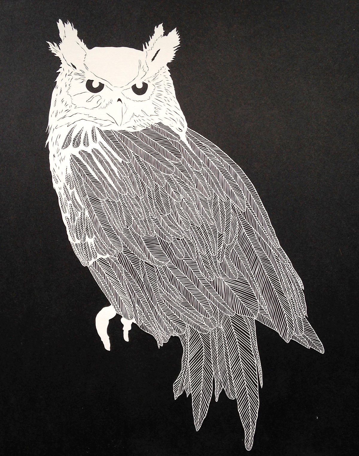 Meticulous Cut Paper Illustrations by Maude White paper illustration birds