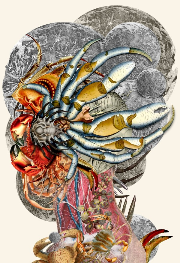 Anatomical Collages Travis Bedel Colossal
