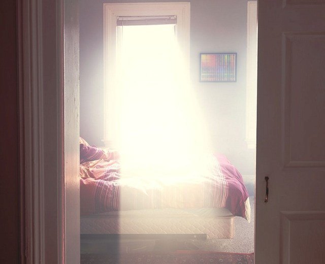 Visible Light By Alexander Harding