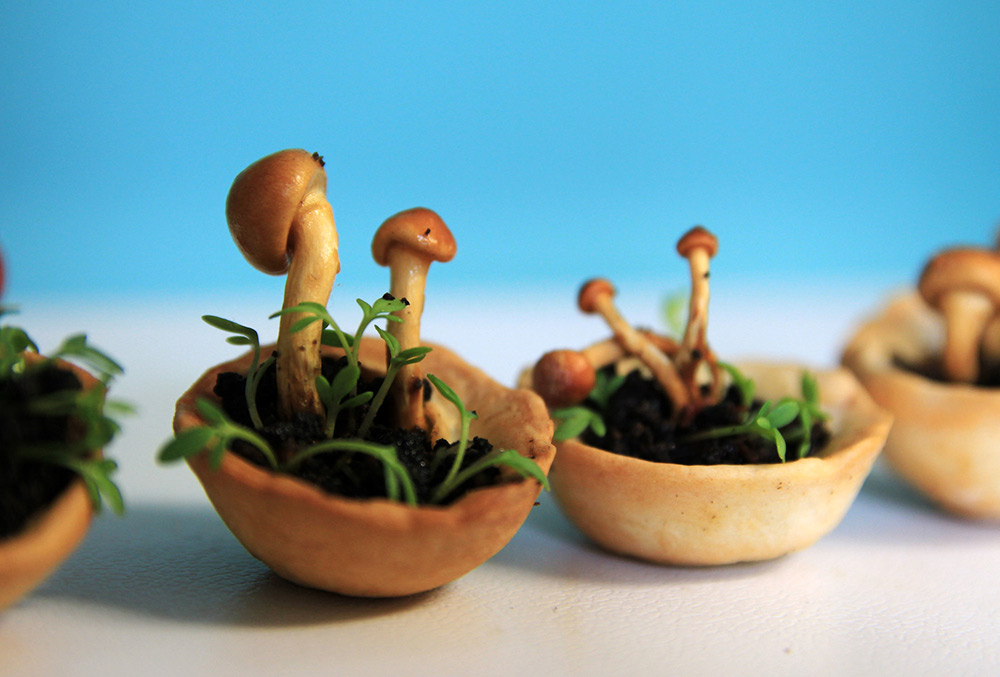 Edible Growth 3D Printed Living Food That Grows Before