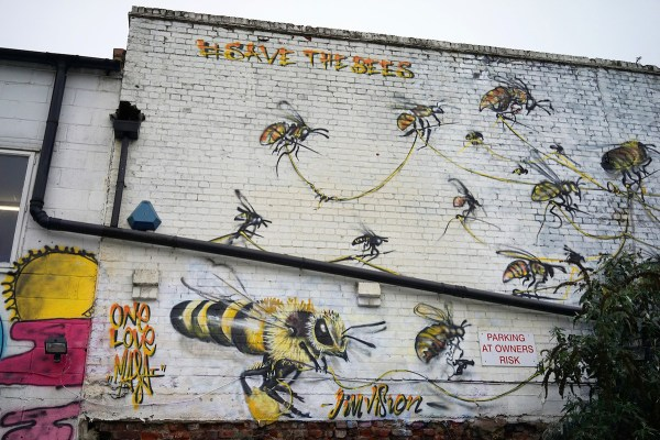 London Street Artist Paints Swarms Of Bees Urban Walls Raise Awareness Colony