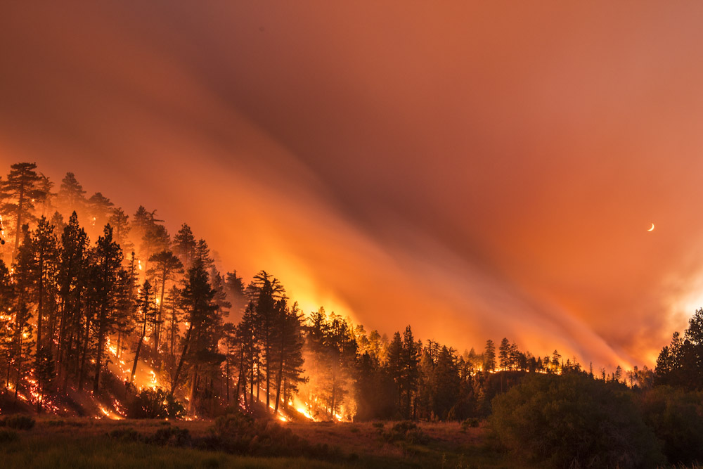 The Lake Fire burns in the San Bernardino National Forest Thursday June 18, 2015. By evening the fire burned over 10,000 acres and was 5% contained. The Lake Fire burns along it's northern flank at night in the San Bernardino National Forest Late Thursday night. The Lake Fire burns in the San Bernardino National Forest Thursday June 18, 2015. By evening the fire burned over 10,000 acres and was 5% contained.