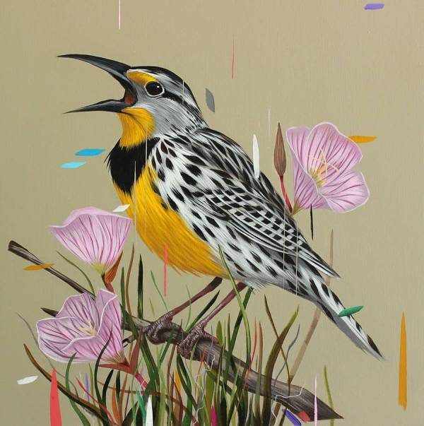 Paintings Of Birds Sprinkled With Color Frank Gonzales Colossal