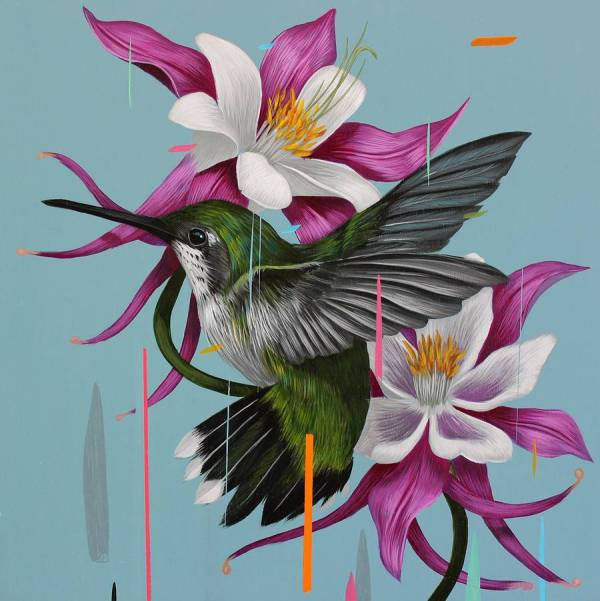 Paintings Of Birds Sprinkled With Color Frank Gonzales