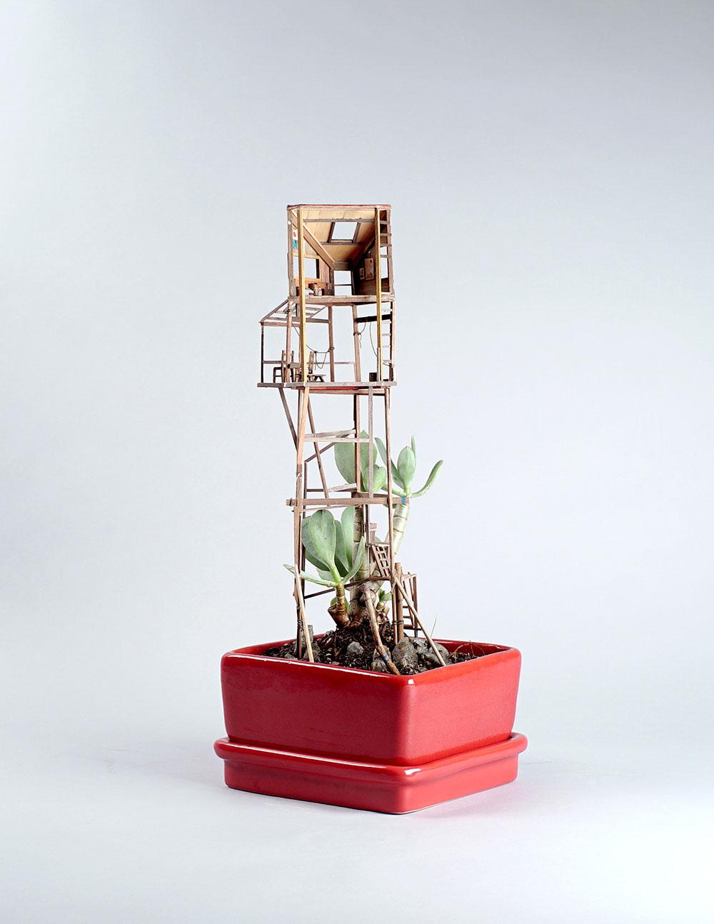 Miniature Sculptures Plant Decor on Succulent in Square Red Pot Jedediah Voltz Artwork