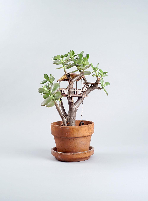Miniature Sculptures Plant Decor on Succulent in Round Clay Pot Jedediah Voltz