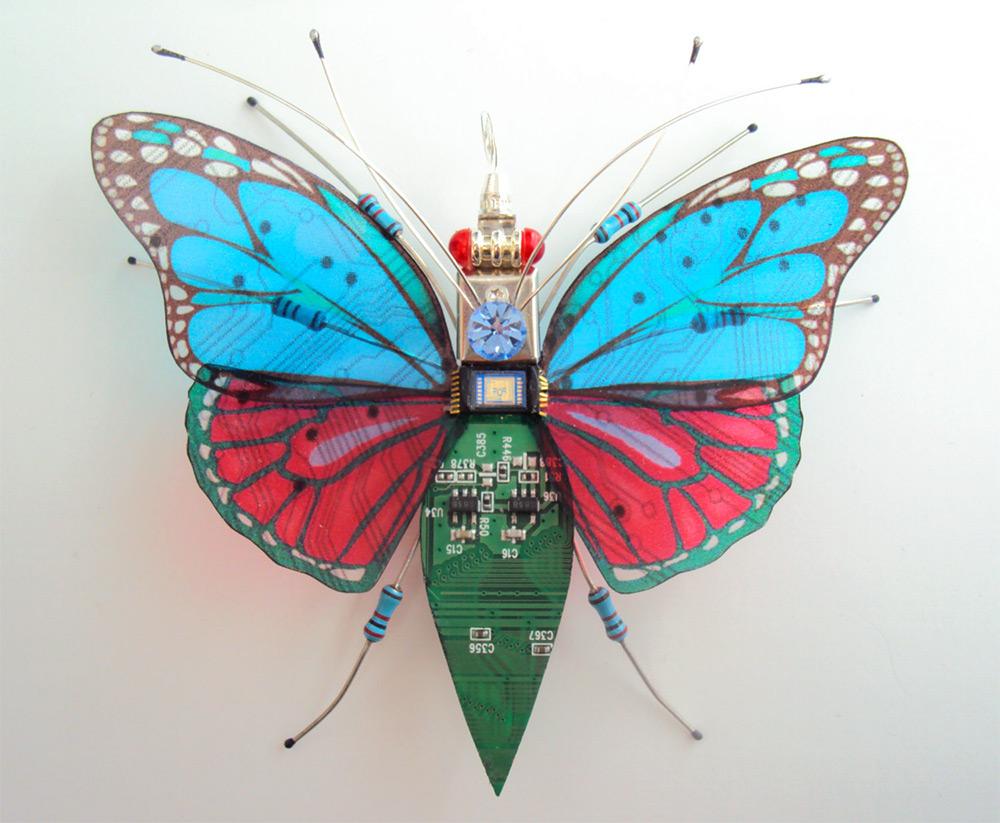 bug-1