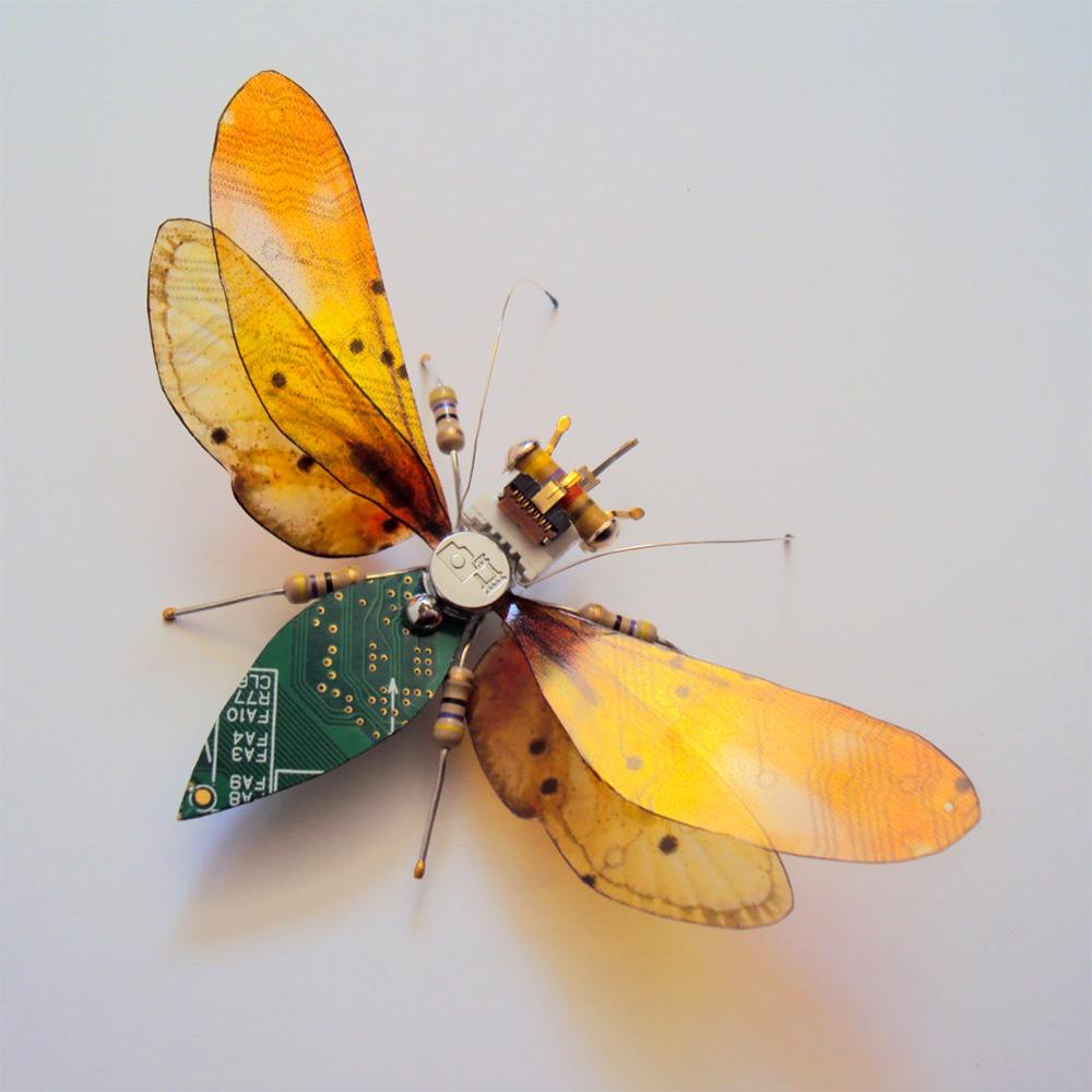 bug-7
