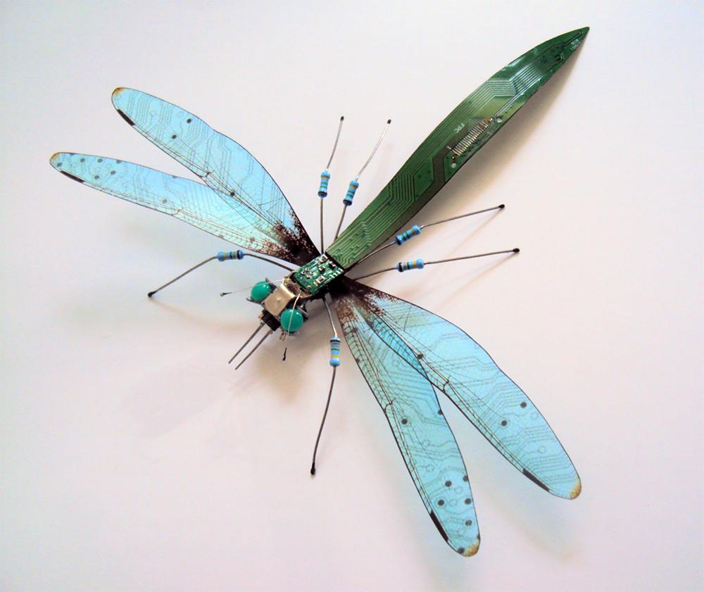 bug-9