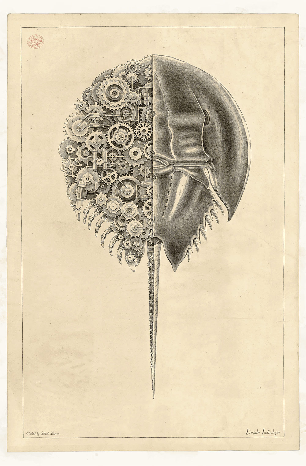 Mechanical Crustaceans with Clockwork Insides Illustrated