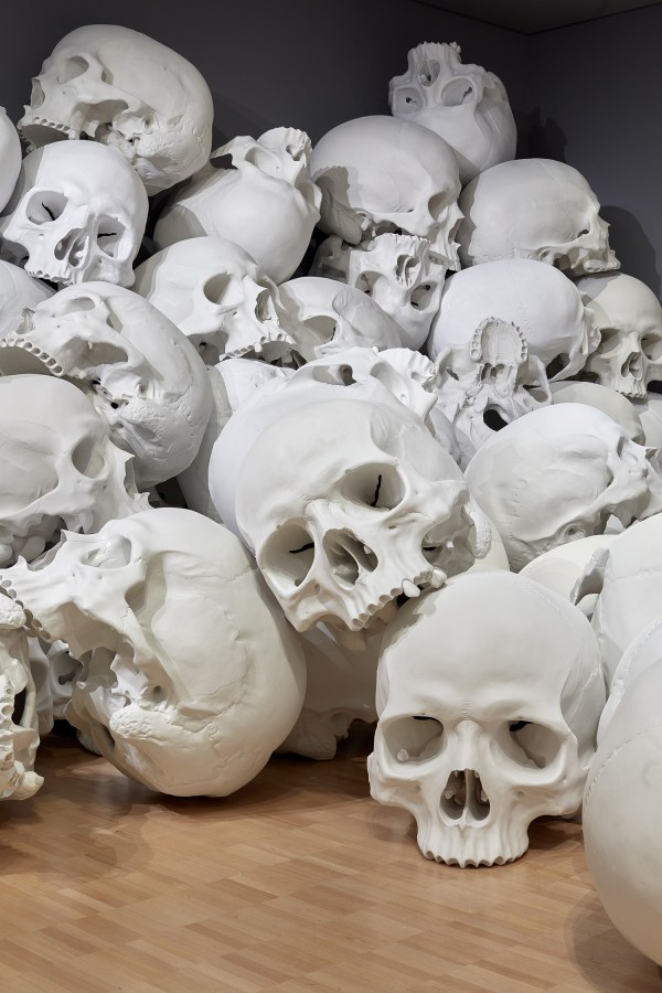 Fiberglass And Resin Skulls Fill Room