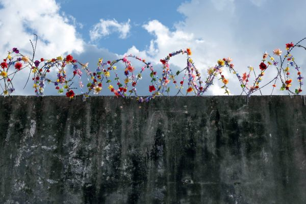 Fence And Border Interventions Icy Sot Colossal