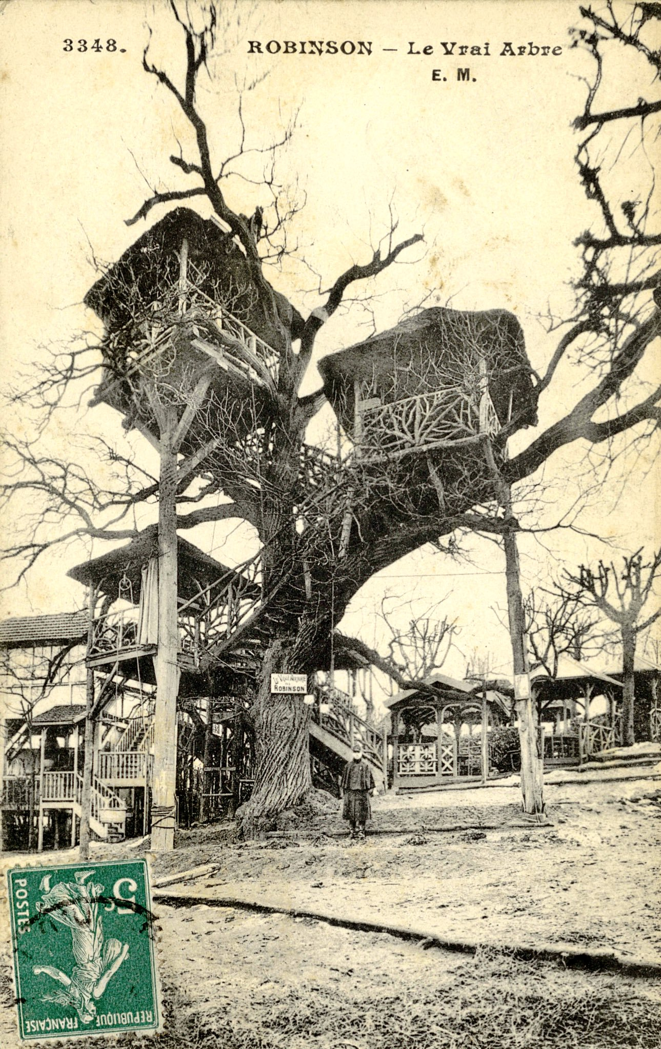 In A French Commune Built An Interconnected Treehouse